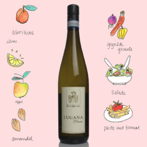 Turbiana-Lugana-wijnadvies De Logie